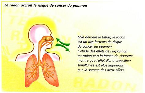 radon et cancers des poumons